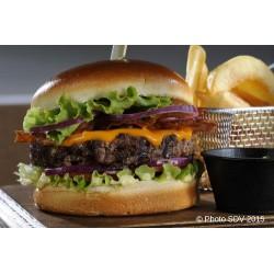 Gourmet cheese burger guacamole