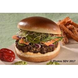 Burger gourmet Andaman