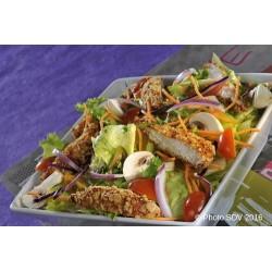 Salade gringos chicken
