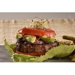 Burger mode paleo