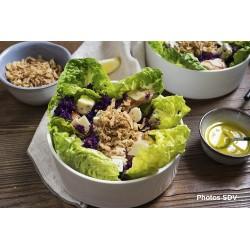 Salade de poulet au bleu et aux oignons frits