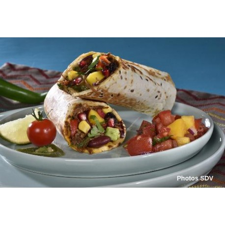 Burrito beef mex