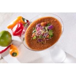 Gazpacho mexicain