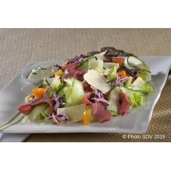 Pastrami & Parmesan salad