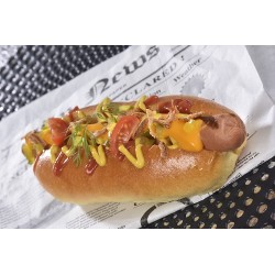 Hot dog cheddar